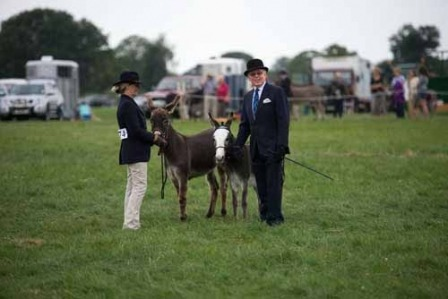 Boroughbridge Show27