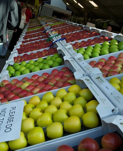 Countryside Live - apples