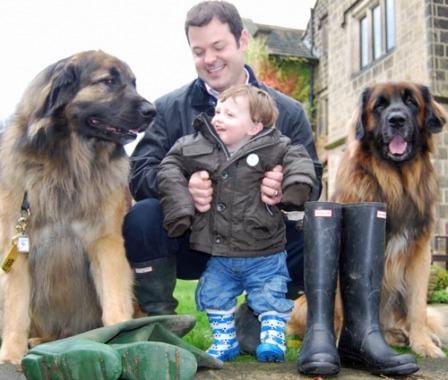 Sponsored dog walk in Harrogate